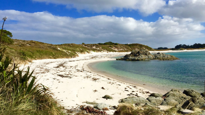 Chatham Islands – Selling Fast